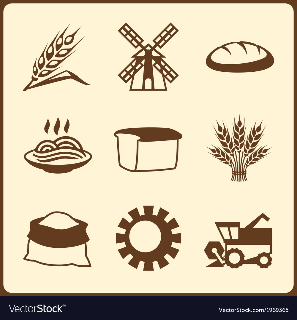 Cereal cultivation and farming icon set vector | Price: 1 Credit (USD $1)