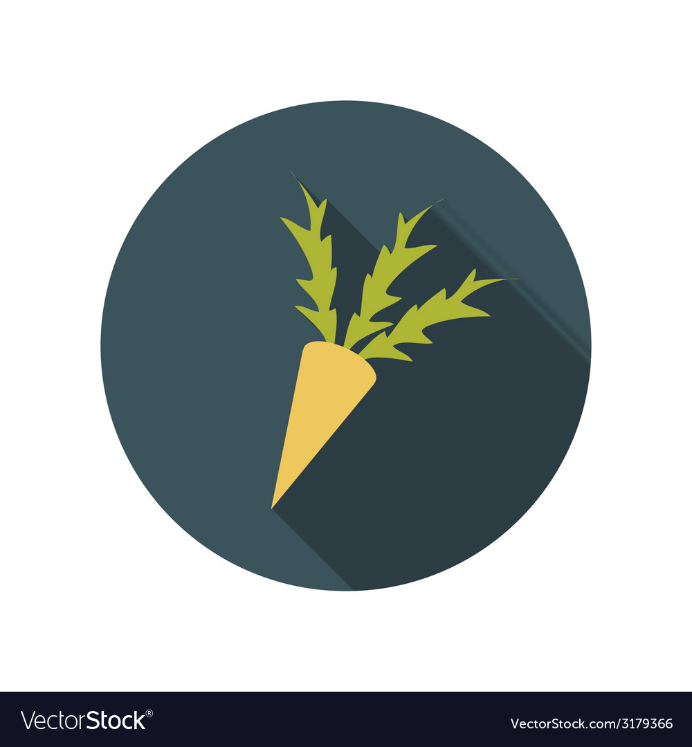 Flat design concept carrot with long shadow vector | Price: 1 Credit (USD $1)