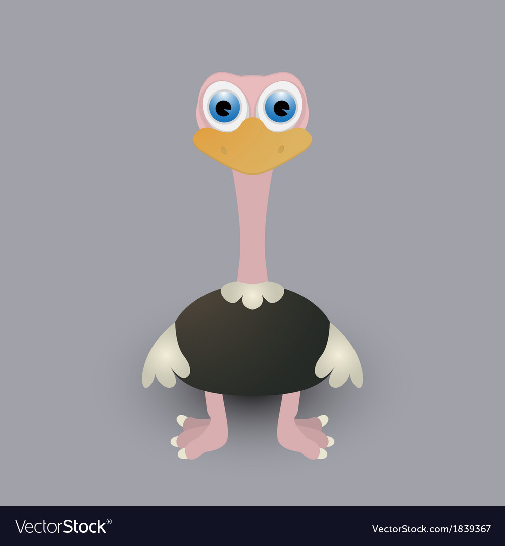 Cute baby ostrich vector | Price: 1 Credit (USD $1)