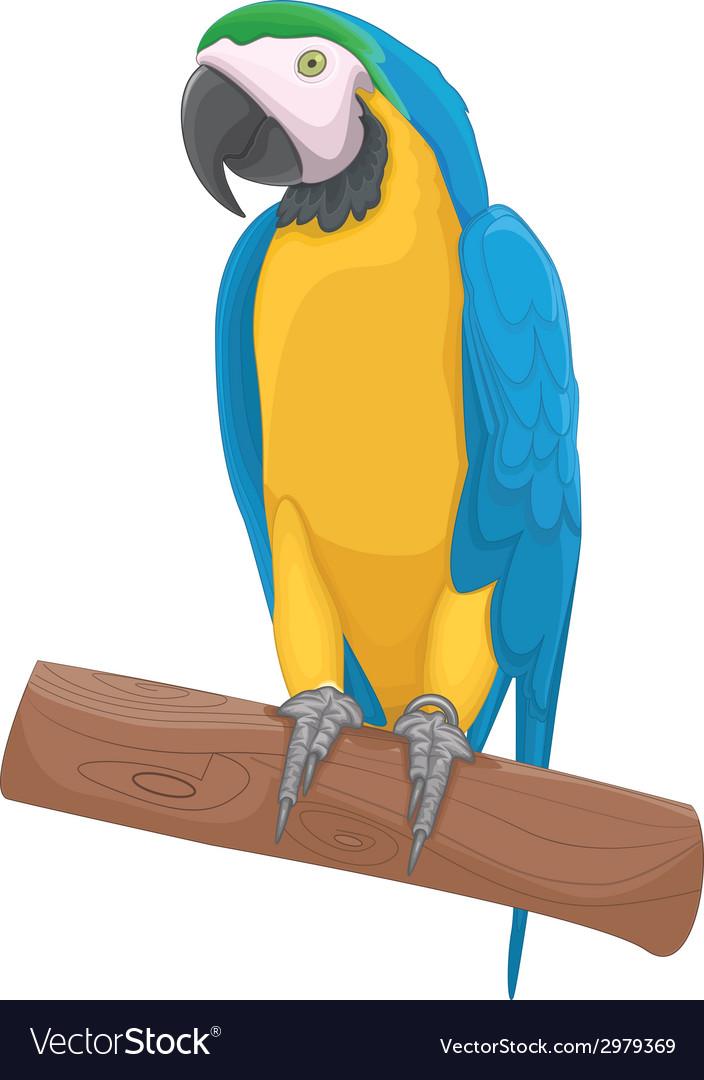 Parrot bird vector | Price: 1 Credit (USD $1)