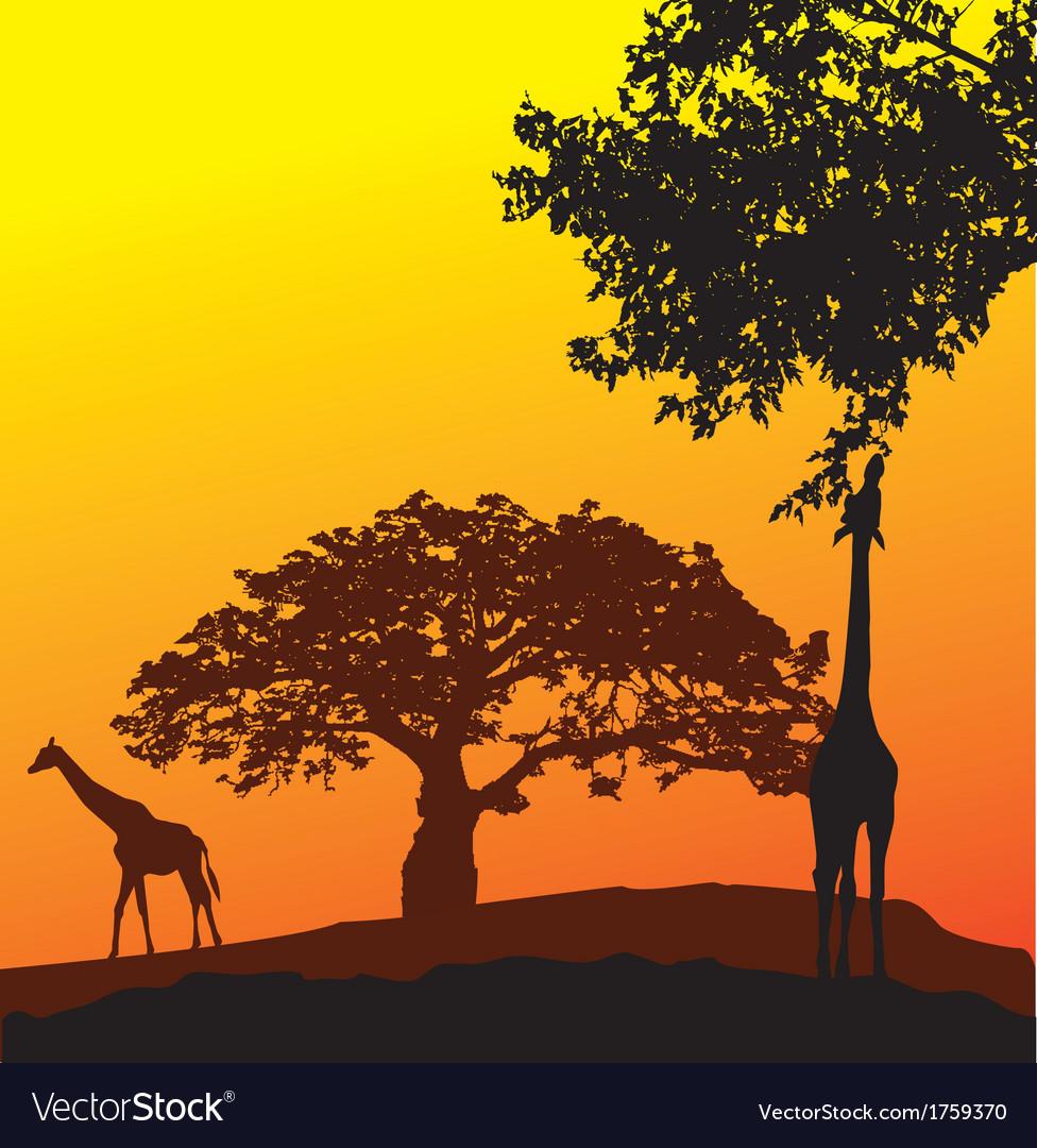Africa vector | Price: 1 Credit (USD $1)