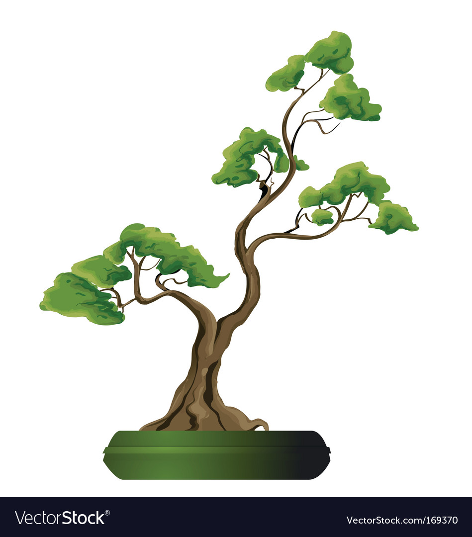 Bonsai vector | Price: 1 Credit (USD $1)