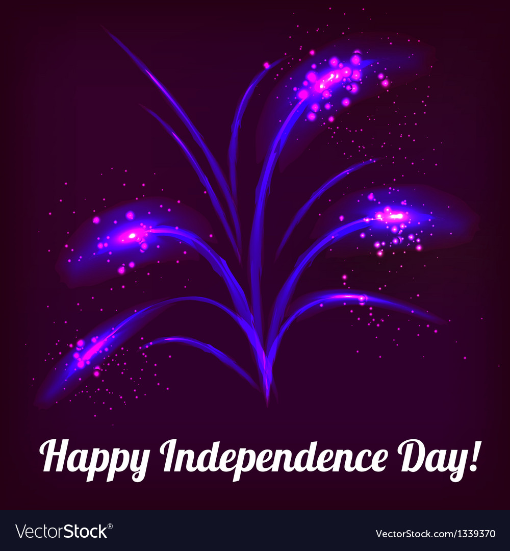 Firework in honor of independence day vector | Price: 1 Credit (USD $1)