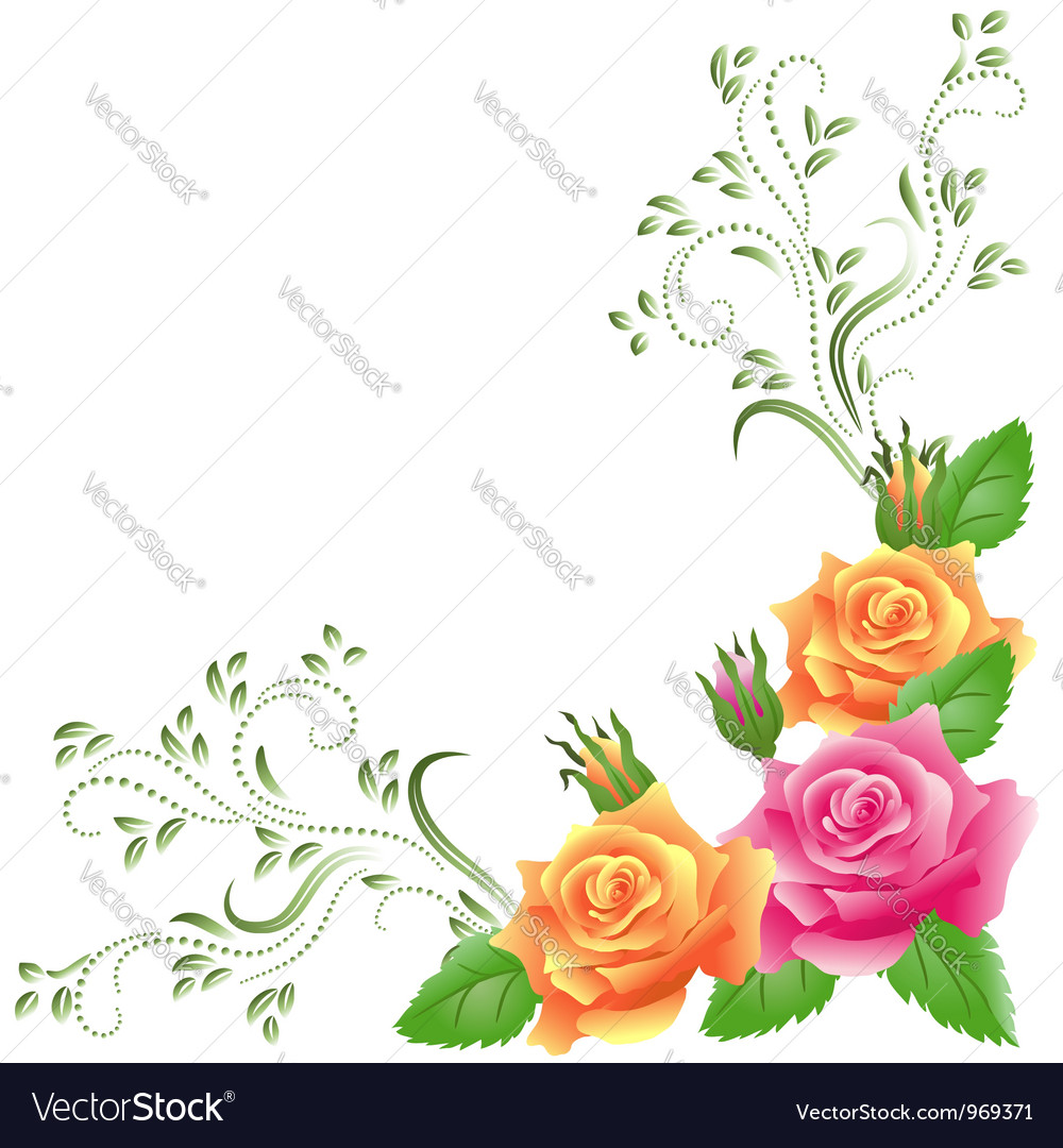 Pink and yellow roses vector | Price: 1 Credit (USD $1)