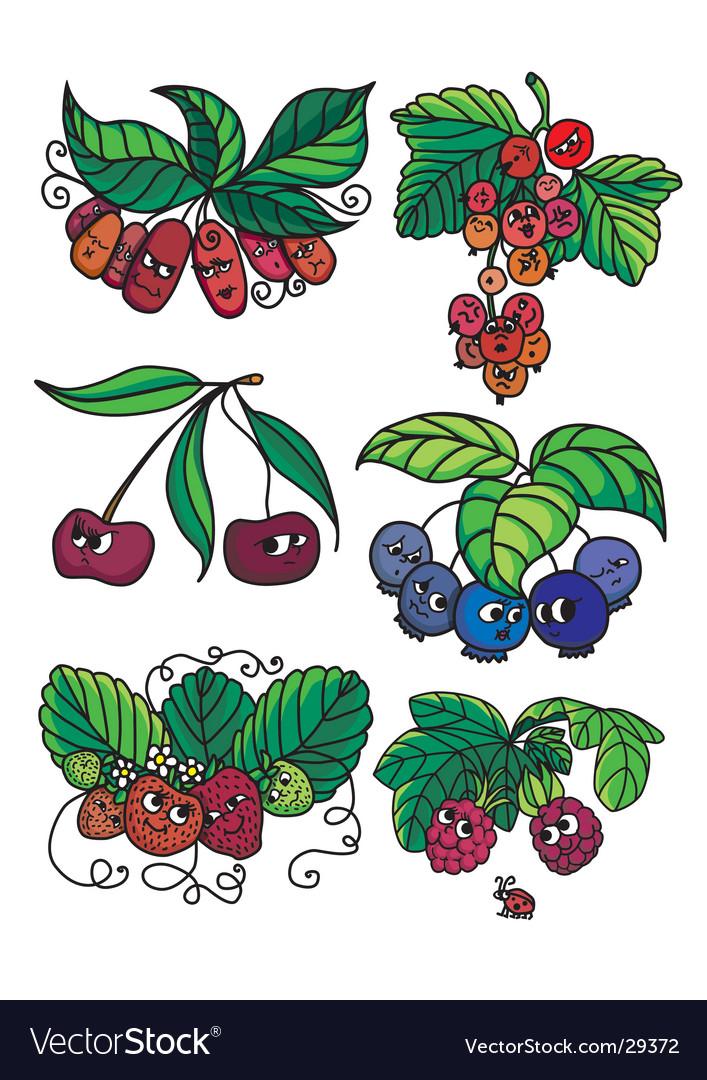 Living berries vector   Price: 1 Credit (USD $1)