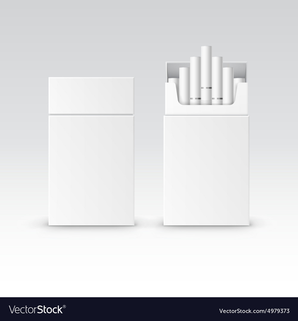 Blank pack package box of cigarettes vector