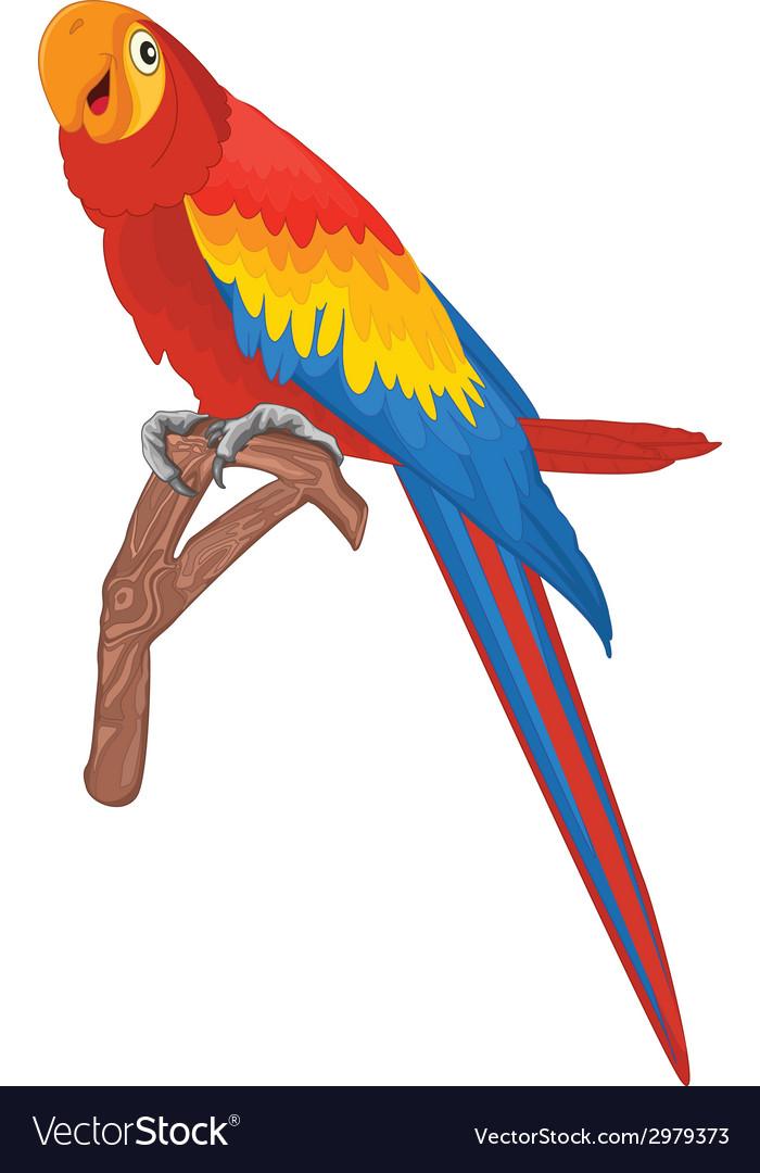 Red parrot bird vector | Price: 1 Credit (USD $1)