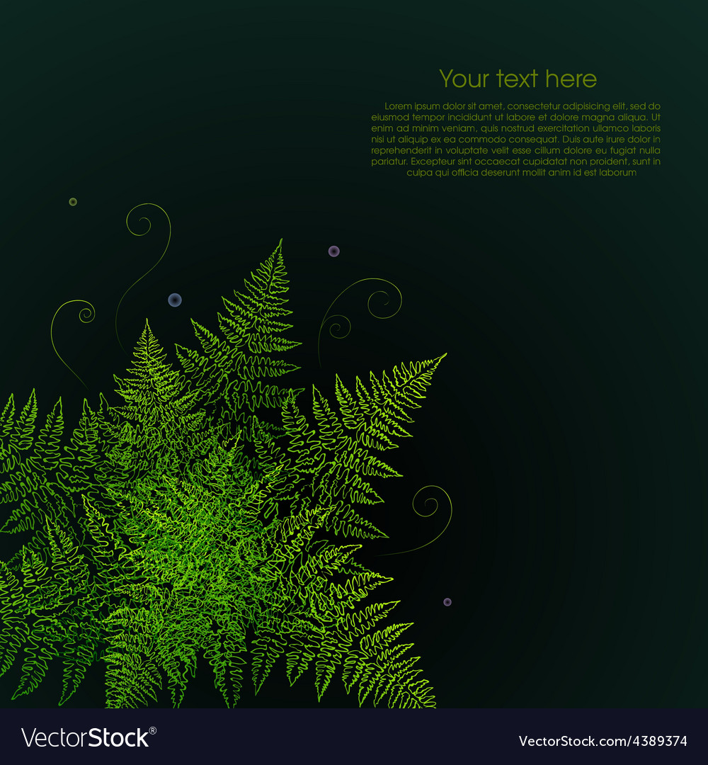 Green fern plant on a black background vector | Price: 1 Credit (USD $1)