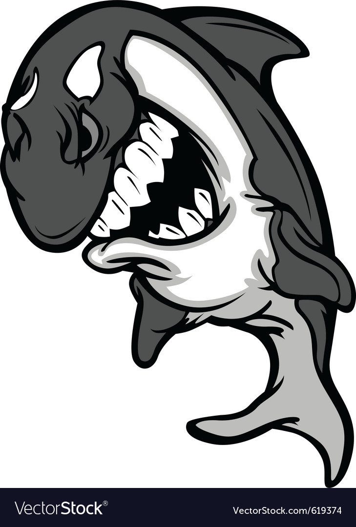 Killer-whale vector | Price: 1 Credit (USD $1)
