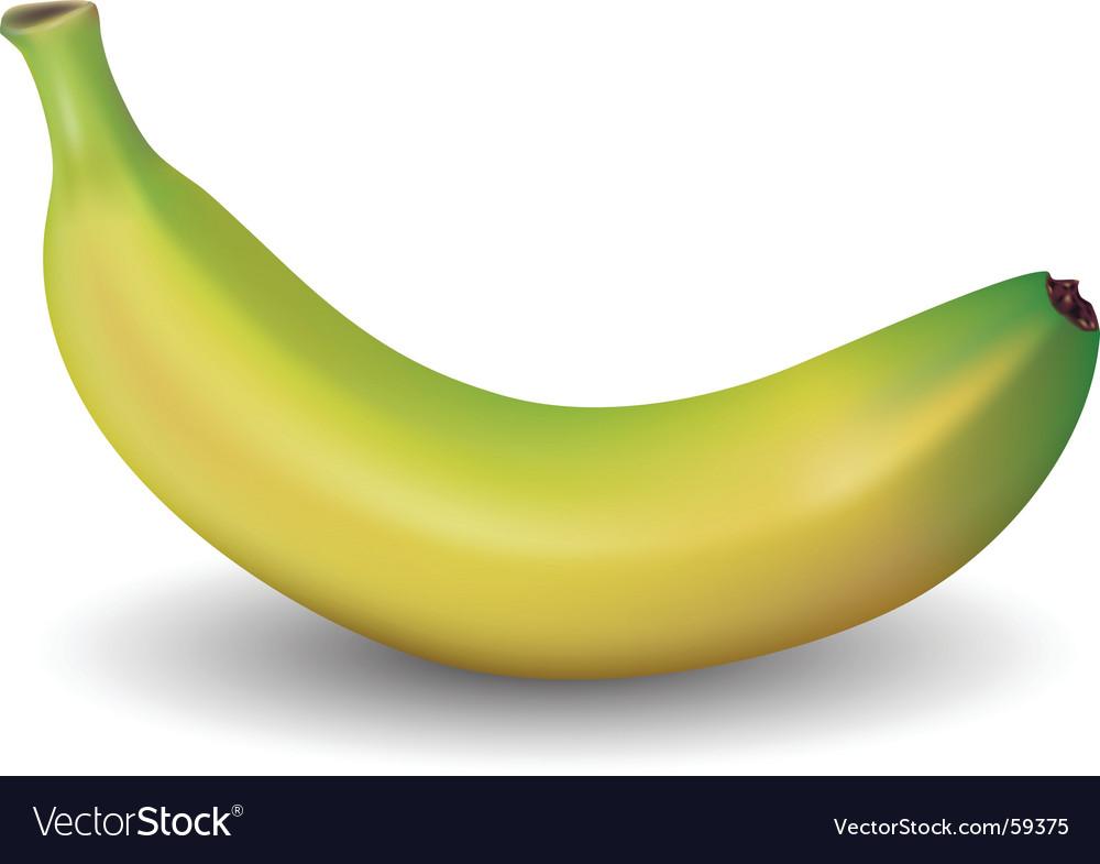 Banana vector | Price: 1 Credit (USD $1)