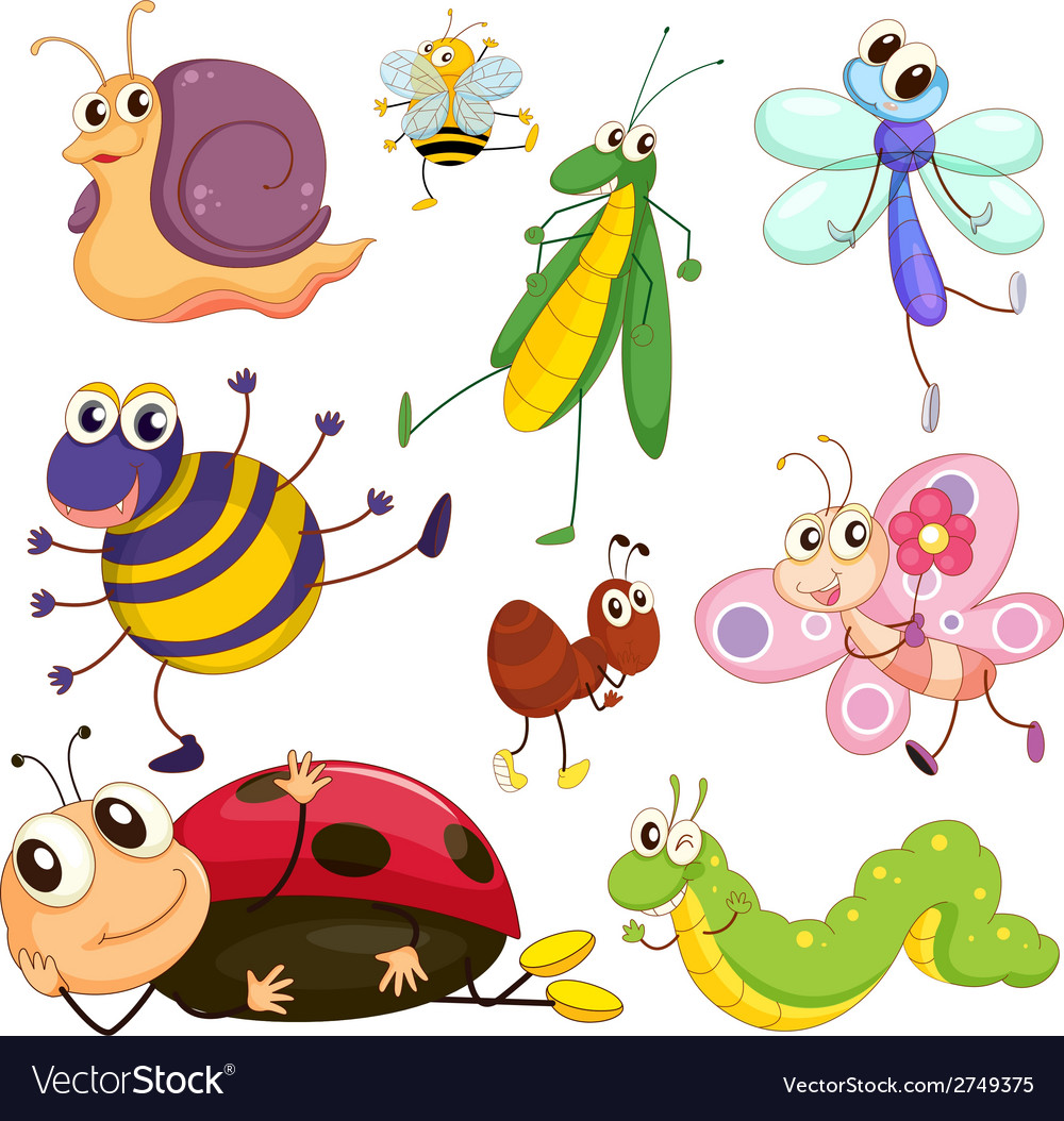 Different insects vector | Price: 1 Credit (USD $1)