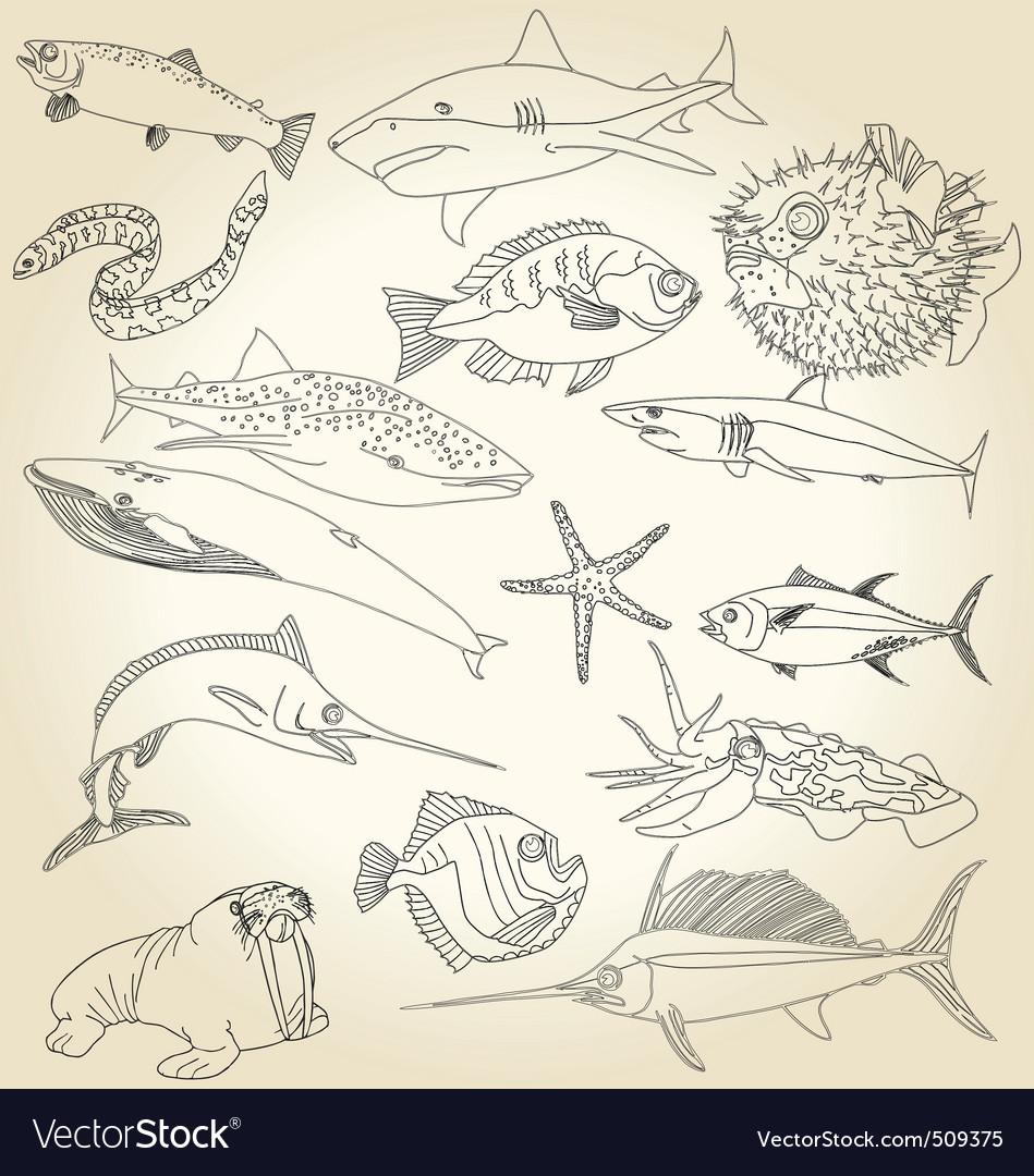 Ocean life vector   Price: 1 Credit (USD $1)