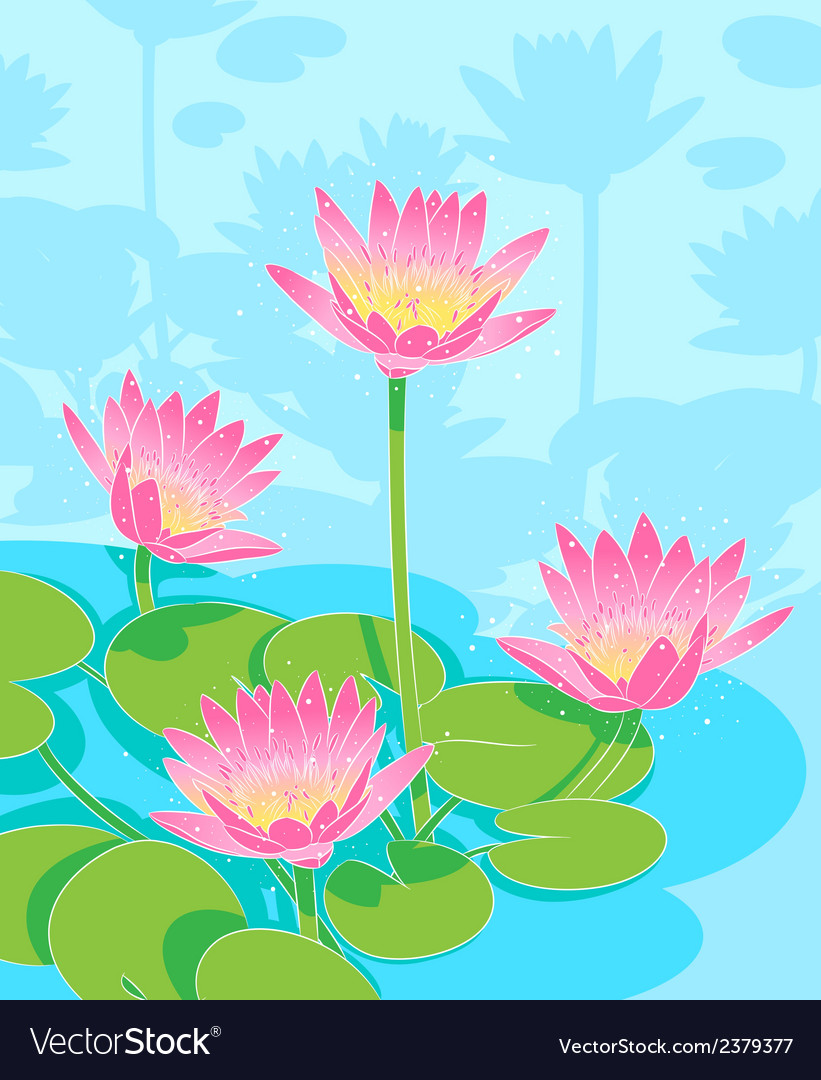 Beautiful waterlilys vector | Price: 1 Credit (USD $1)