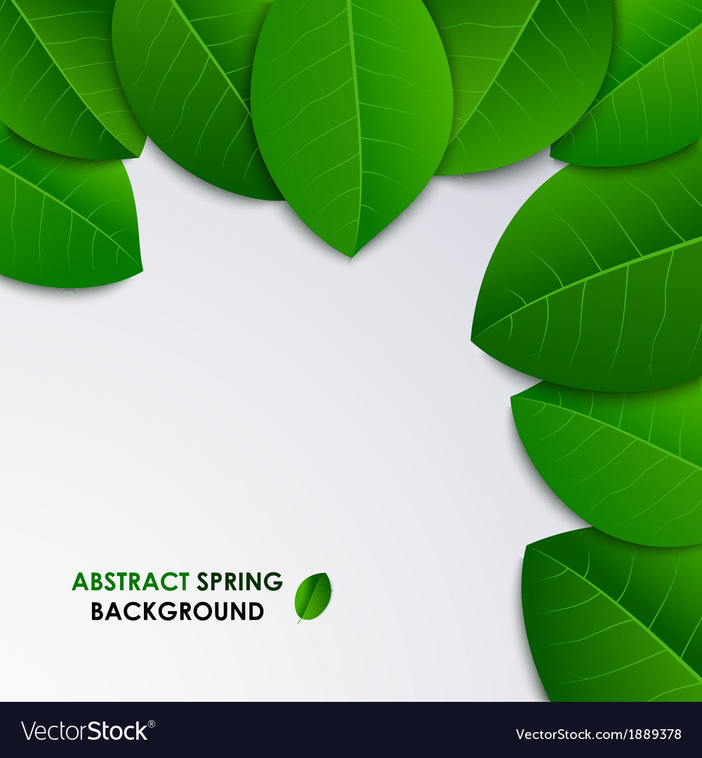 Abstract spring fresh background with green leaves vector | Price: 1 Credit (USD $1)
