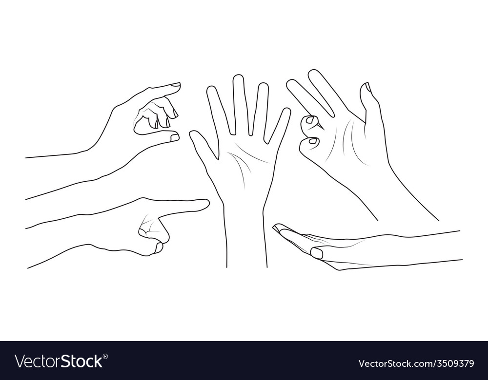 Set of hands vector | Price: 1 Credit (USD $1)