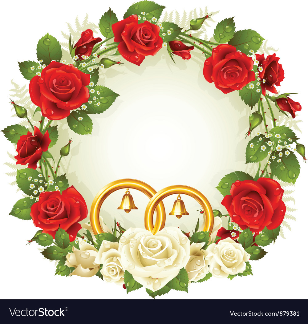 Flower frame white and red rose vector | Price: 3 Credit (USD $3)