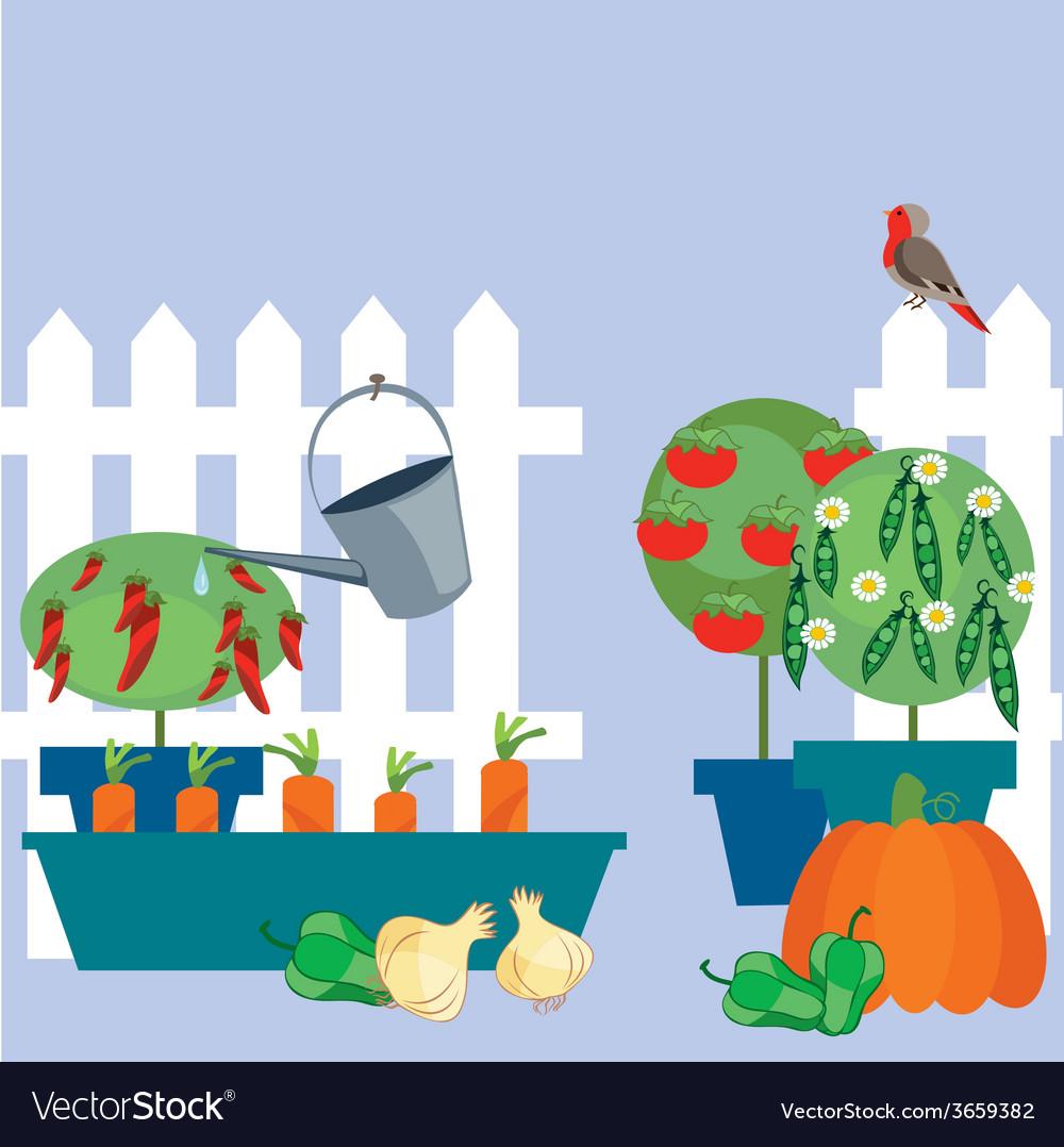Garden of vegetables vector | Price: 1 Credit (USD $1)