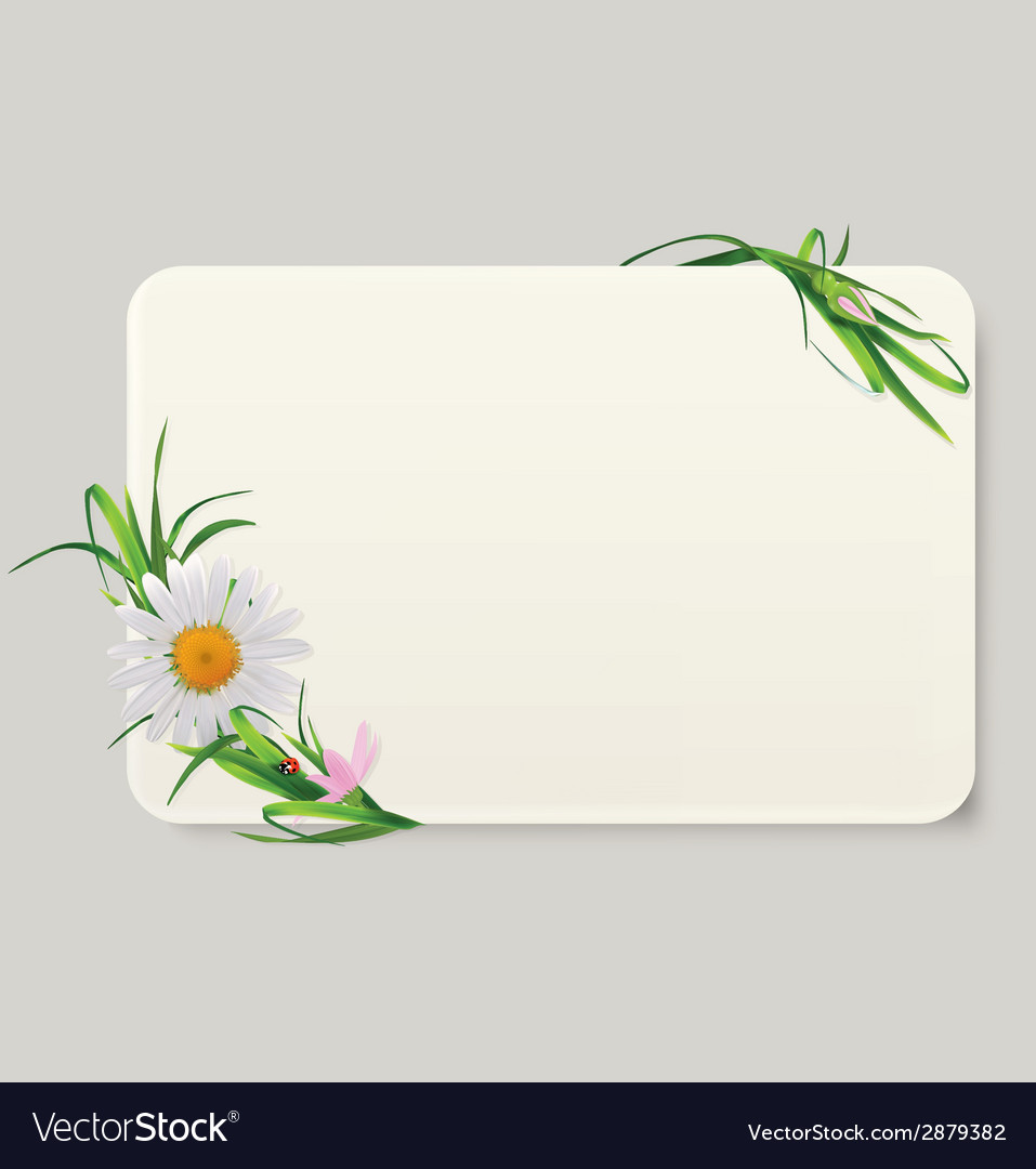 Label camomile vector | Price: 1 Credit (USD $1)