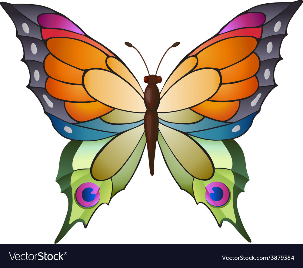 Colorful butterfly vector | Price: 1 Credit (USD $1)