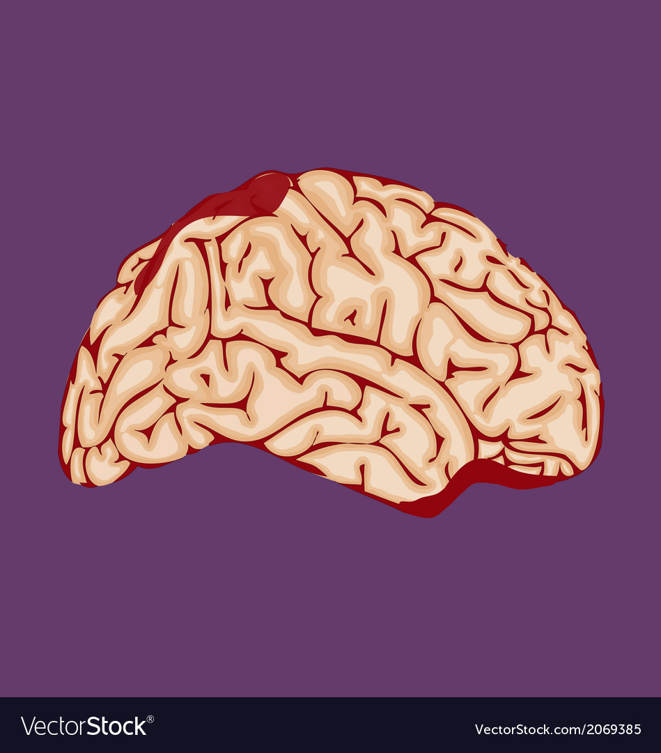 Bloody brain vector | Price: 1 Credit (USD $1)