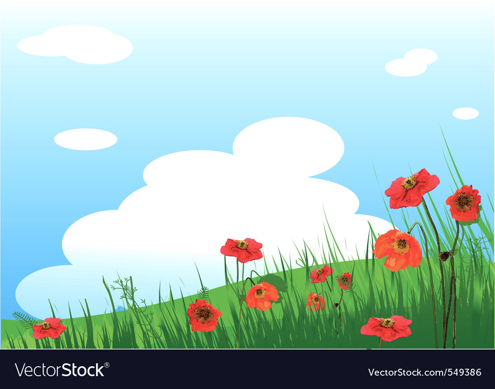 Summer grassy field and poppies flowers background vector | Price: 1 Credit (USD $1)
