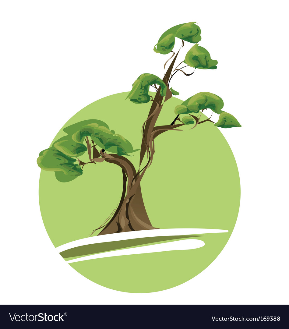 Bonsai tree vector | Price: 1 Credit (USD $1)