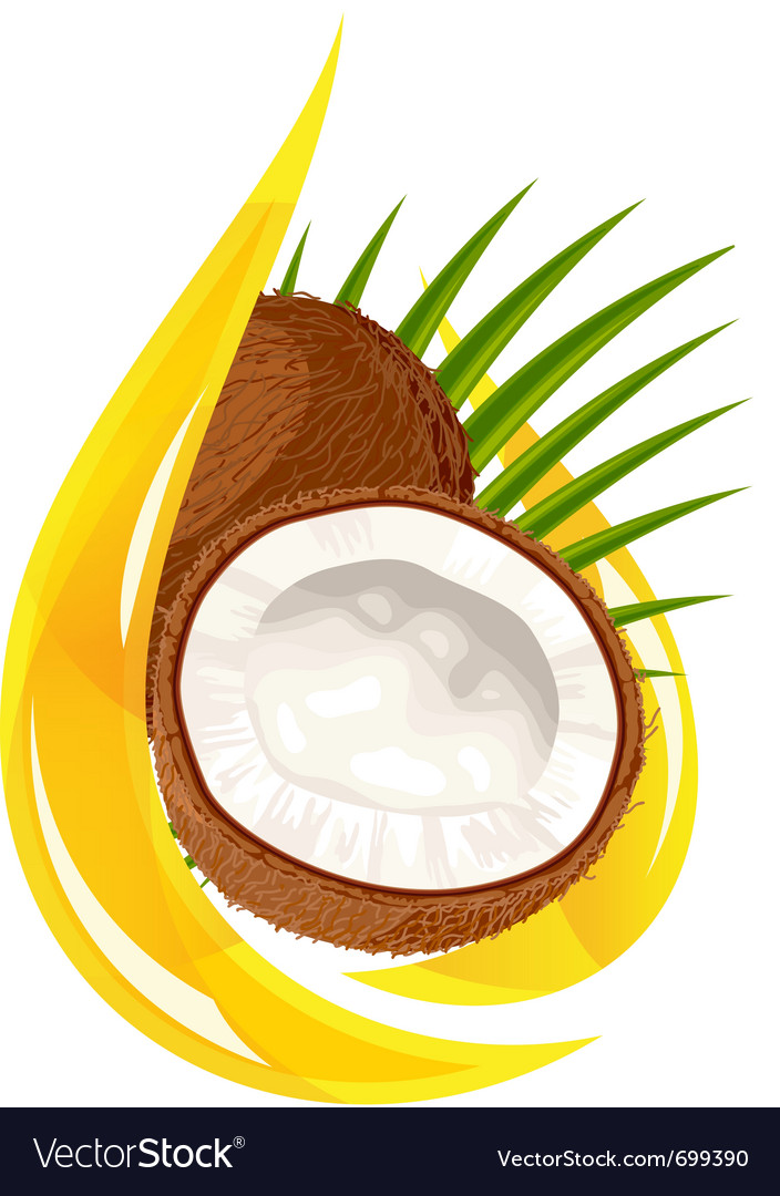 Coconut oil vector | Price: 1 Credit (USD $1)