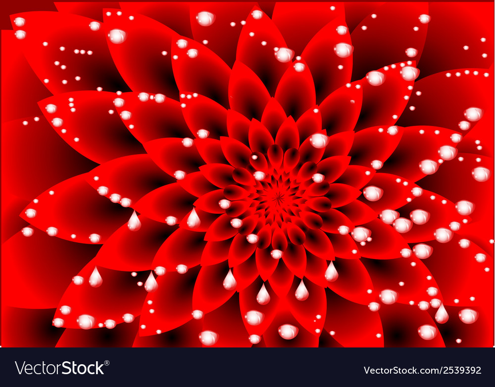 Dahlia red vector | Price: 1 Credit (USD $1)