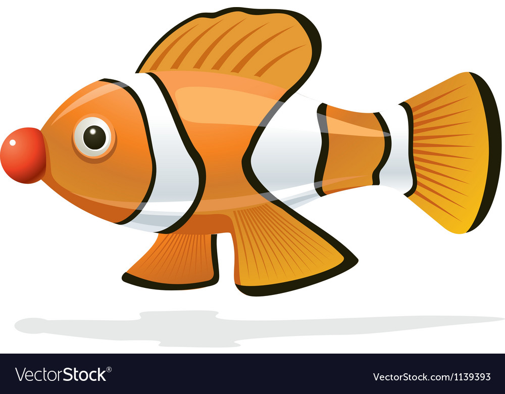 Clown fish vector | Price: 1 Credit (USD $1)