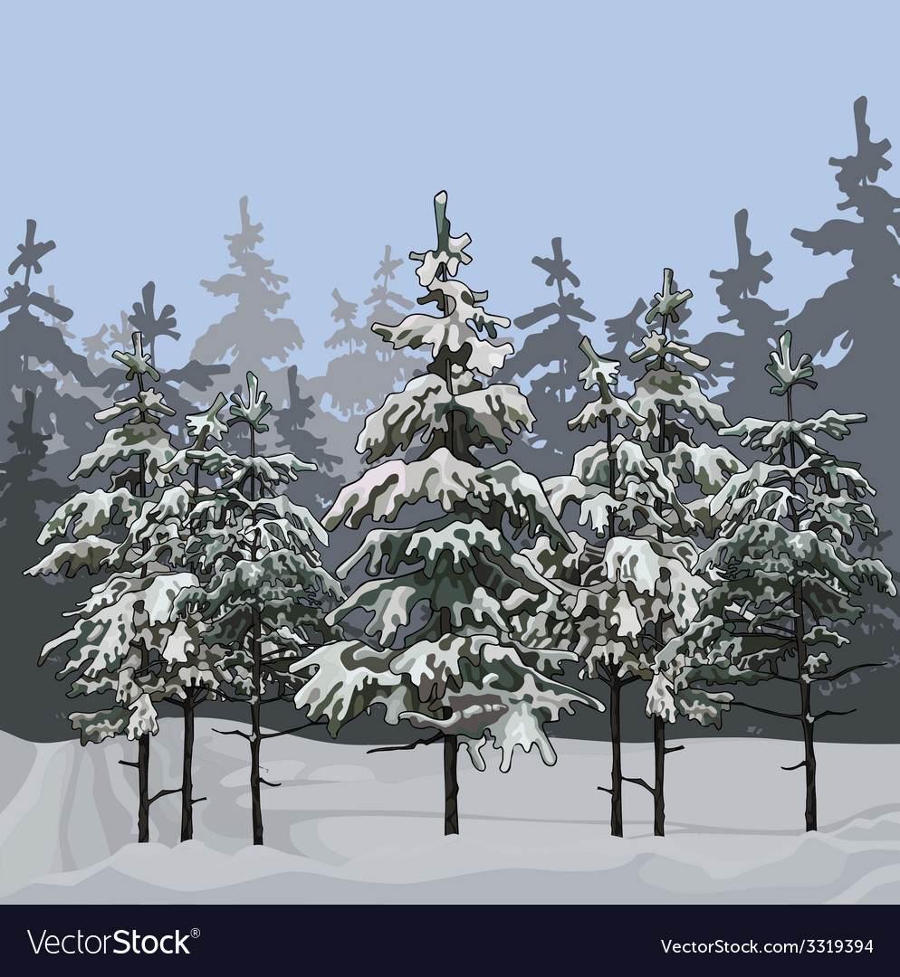 Winter forest with fir trees vector | Price: 1 Credit (USD $1)