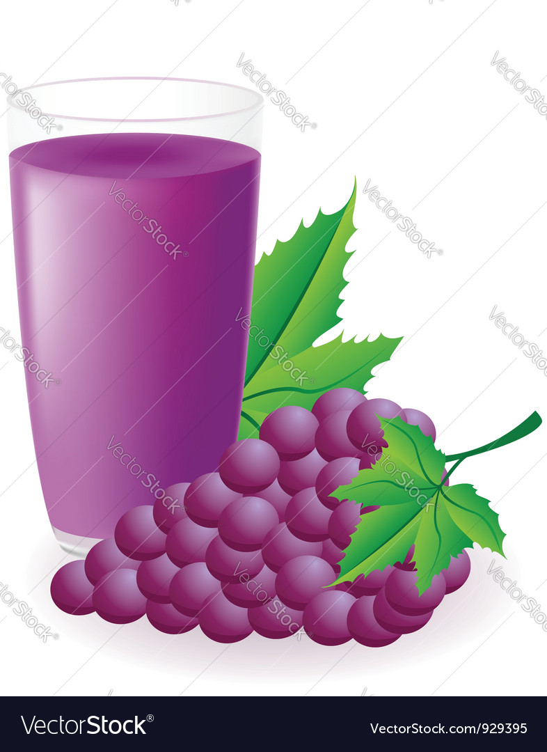 Blue grape juice vector | Price: 1 Credit (USD $1)