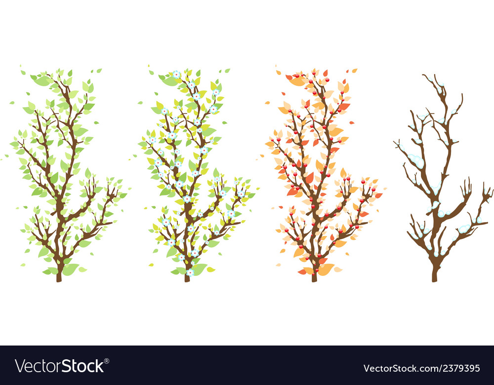 Changes in the nature vector | Price: 1 Credit (USD $1)