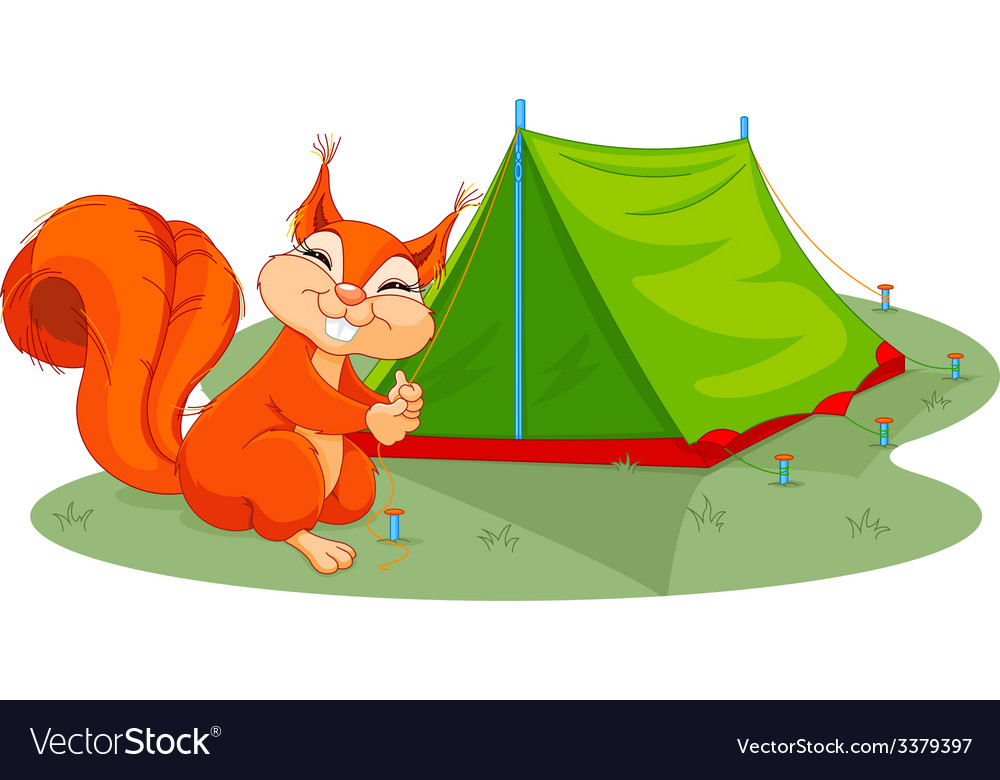 Squirrel sets tent vector | Price: 1 Credit (USD $1)