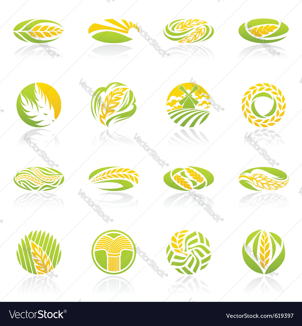 Wheat and rye logo template set elements for desig vector | Price: 1 Credit (USD $1)