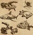 Underwater sea life set no1 - hand drawn vector