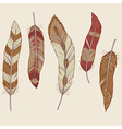 Colorful set of different feathers vector