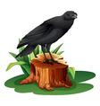 A bird above the stump vector