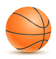 Realistic basketball vector