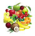 Circle shape contains different fruits with leaves vector