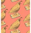 Sketch fancy quail in vintage style vector