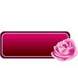 Rose banner vector