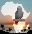 African map with background and grey parrot vector