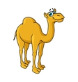 Fun cartoon camel animal character vector
