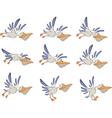 A set of pelicans storyboards vector
