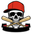 Skull bite a baseball bat vector