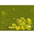 Green vegetable vintage background vector