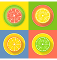 Citrus fruits four icons vector