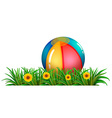 A ball near the green plants with flowers vector