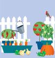 Garden of vegetables vector