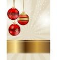 Elegant christmas background vector